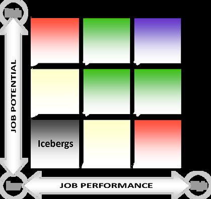Ninebox - iceberg