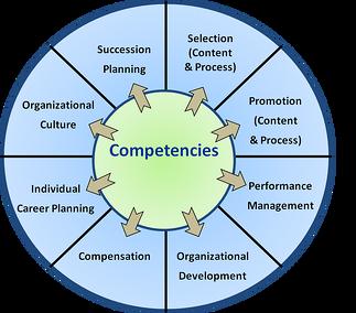 CompetencyWheel