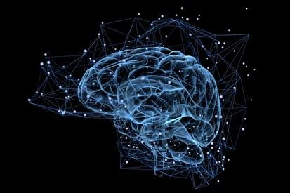 brain-activity.jpg